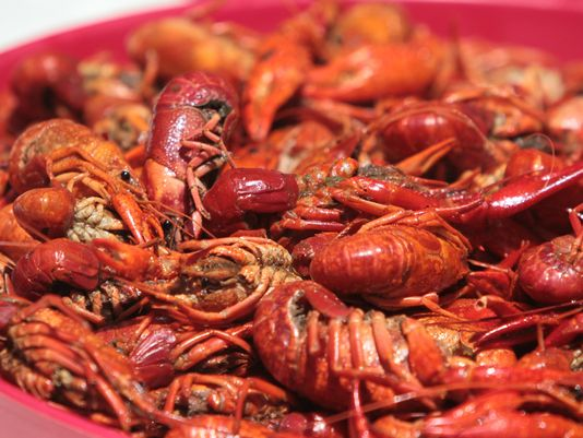 crawfish_157059