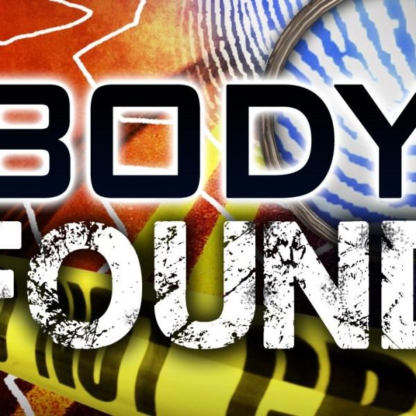 Body Found_178812