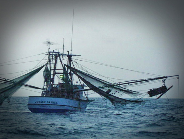 shrimp boat_79126