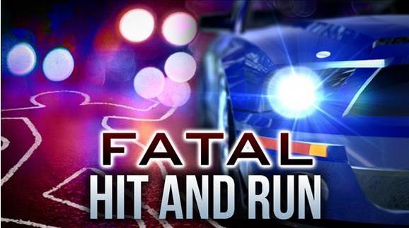 lake charles fatal hit and run_101353