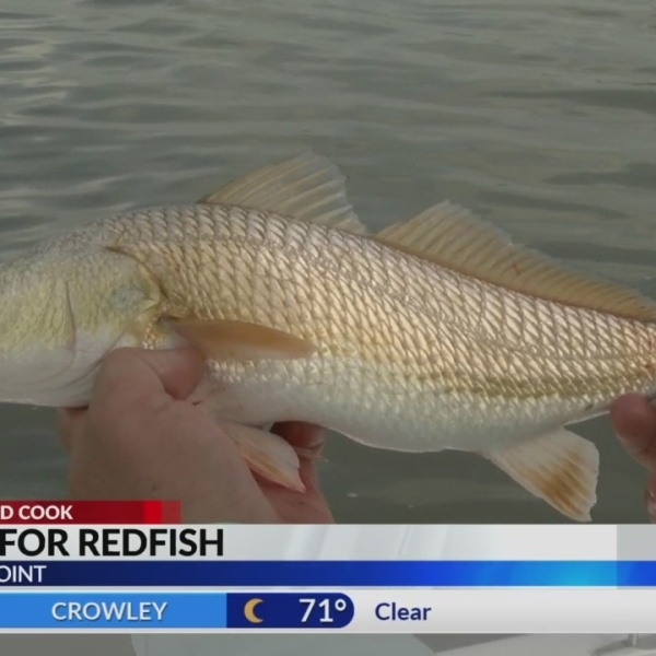 Fishing for redfish at Cypremort Point