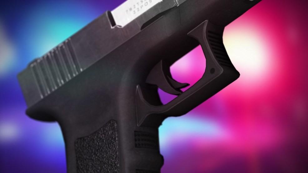 gun_1554773618833.jpg