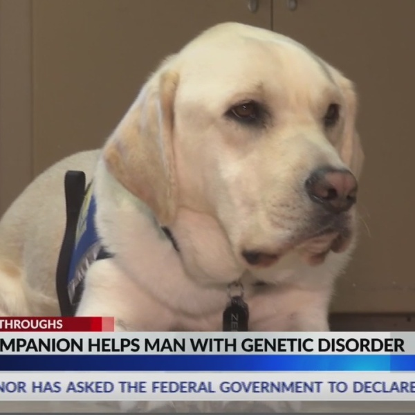 Assistance dog for man with genetic disorder