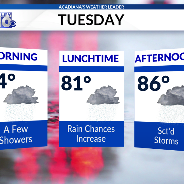 Today Planner AM 3D 6-25-19