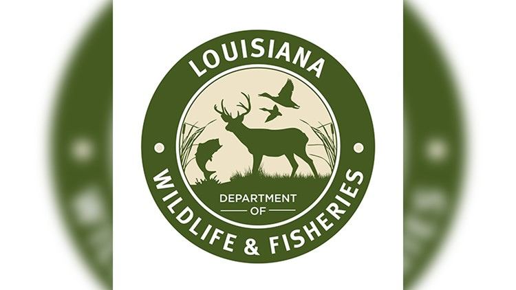 Department of Wildlife and Fisheries