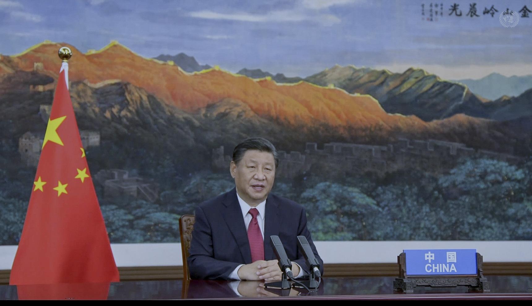 Xi Jinping, President, People's Republic of China
